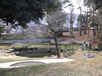 栗谷津公園